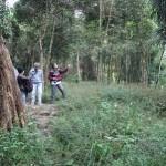 Situs Cemara Pogog - Foto: Djoko Judiantoro/Koranjuri.com