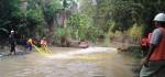 Geger Buaya Lepas Di Sungai Jogobondo Palur