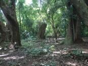 tempat pamuksan Pangeran Onggoloco