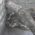Satu Ular Piton Ditemukan Lagi Oleh Warga Di Klaten